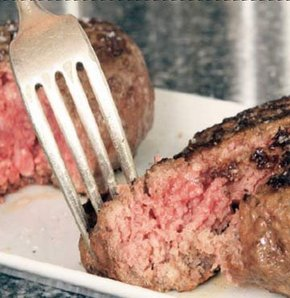 Bu hamburger tartışılır!