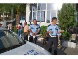 Arı Kamyonunu Çeviren Polisleri Arı Soktu