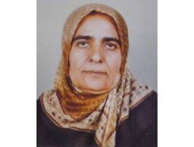 Yazıçayır köyünde,Yaşlı Kadını Kurt Parçaladı
