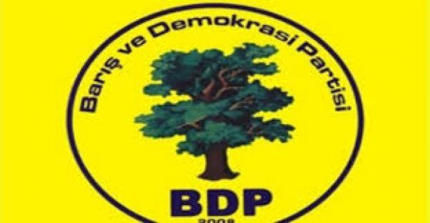 BDP Kulu Belediyesi Meclis Adayları Listesi